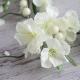 WIANEK dekoracyjny Delikatne Kwiaty