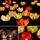PŁYWAJĄCE kwiaty 6szt