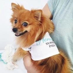 KOSZULKA dla psa - ubranko ślubne z imieniem Podróż Poślubna